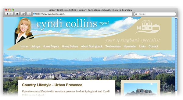 Cyndi Collins real estate agent's website screenshot