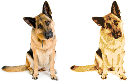 Dog photo and illustration