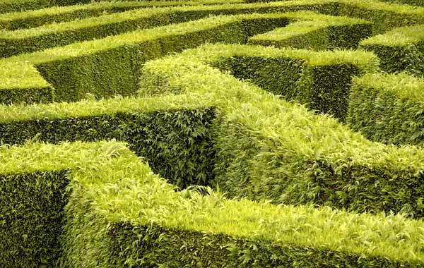 maze - usability