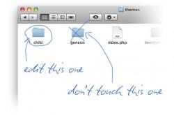 wordpress-theme-folders