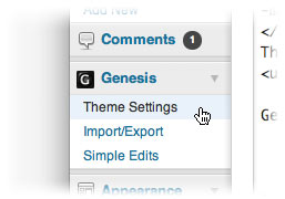 genesis-theme-settings