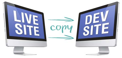 copy live site to dev site