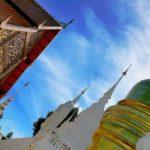 suan dok temple chiang mai