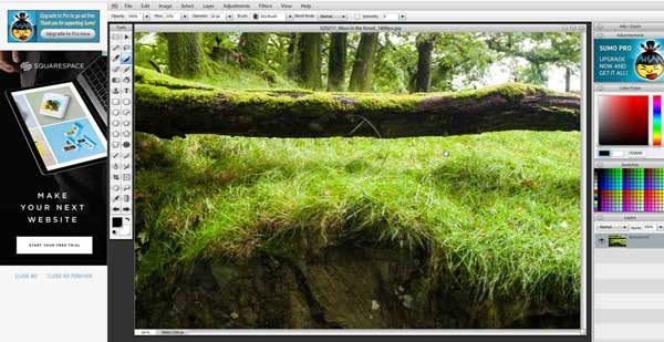 SumoPaint is an online photo editor that can substitute Photoshop.