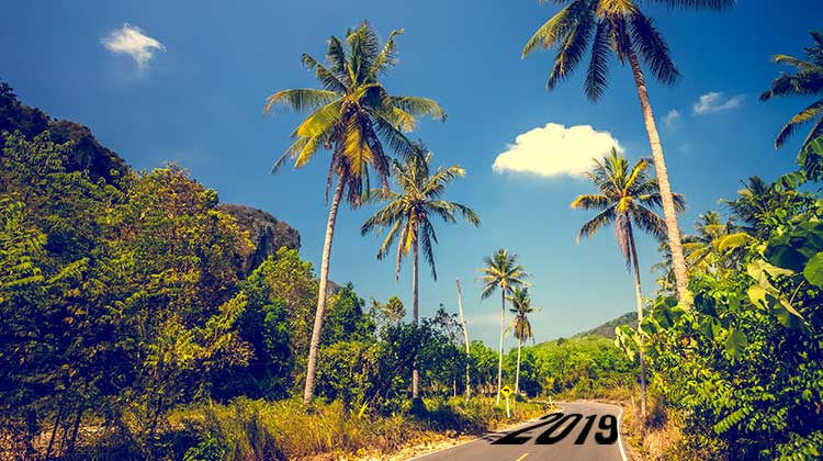 Road to 2019 in Thailand