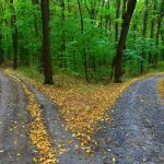 fork roads depicting active vs passive income earning from home