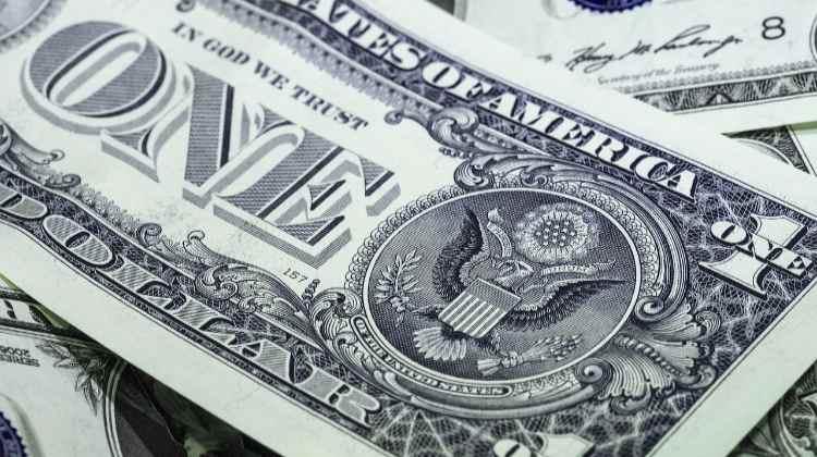 money dollars banknote